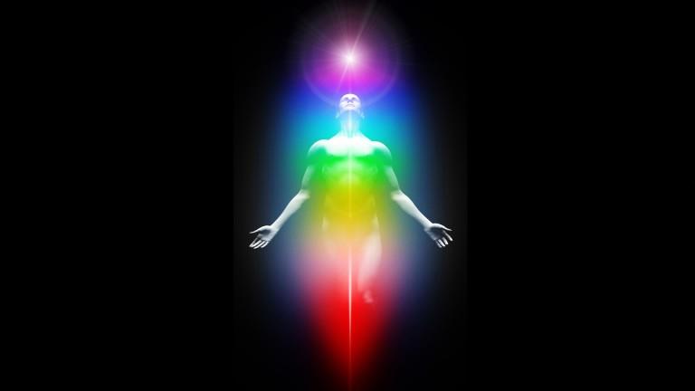 Das Energiepotential jeder Zelle  wird durch die Aufnahme von Biophotonenaufgebaut
